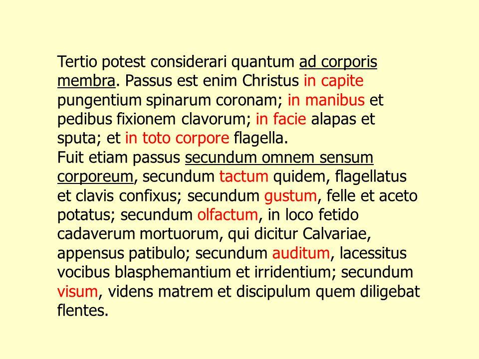 Tertio potest considerari quantum ad corporis membra. Passus est enim Christus in capite pungentium spinarum coronam; in manibus et pedibus fixionem c