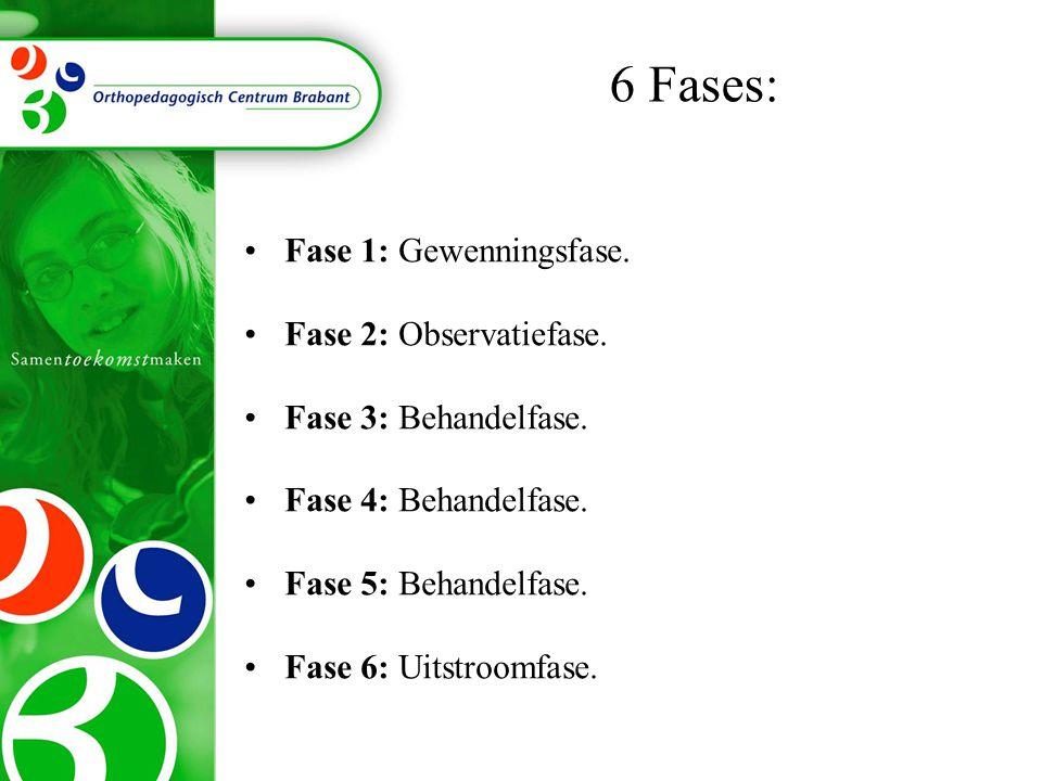 •Fase 1: Gewenningsfase.•Fase 2: Observatiefase. •Fase 3: Behandelfase.