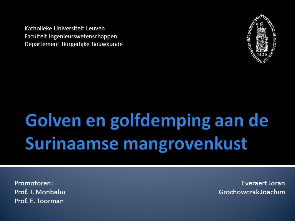 Katholieke Universiteit Leuven Faculteit Ingenieurswetenschappen Departement Burgerlijke Bouwkunde Everaert Joran Grochowczak Joachim Promotoren: Prof