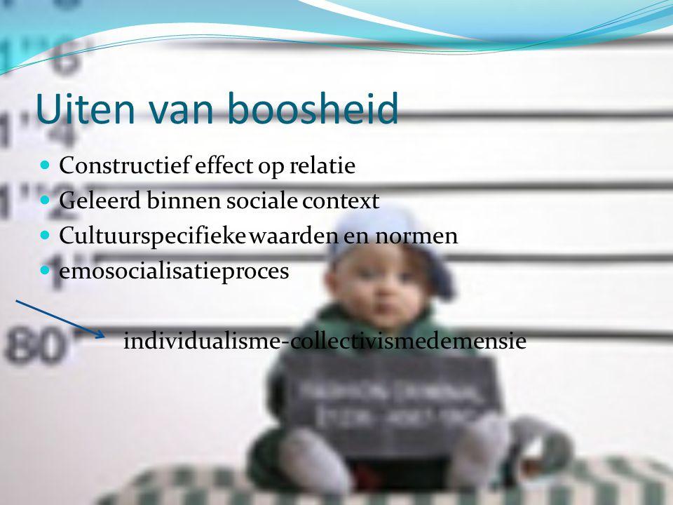 Individualistische culturen  Nederland  Autonomie  Zelfstandigheid waarden  Persoonlijke voorkeuren  Meningen  Jezelf kunnen zijn  Assertiviteit normen  Vrijheid van meningsuiting