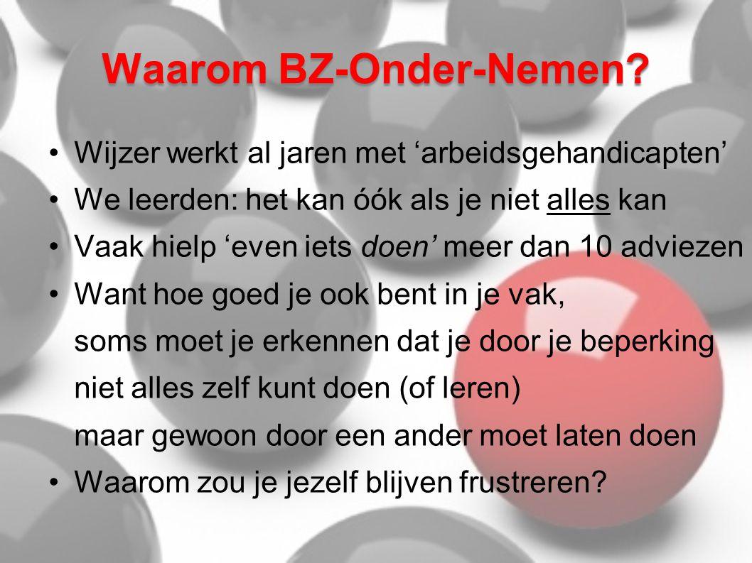 Waarom BZ-Onder-Nemen.