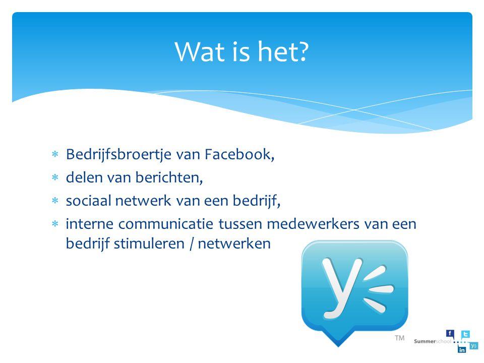  Bedrijfsbroertje van Facebook,  delen van berichten,  sociaal netwerk van een bedrijf,  interne communicatie tussen medewerkers van een bedrijf s
