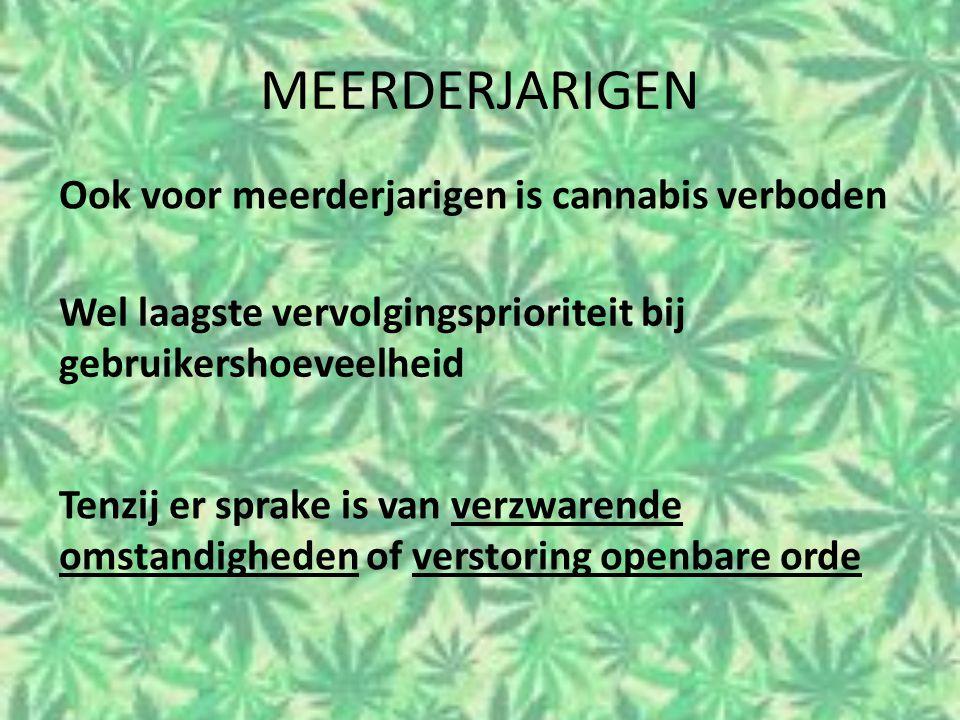 MEERDERJARIGEN Ook voor meerderjarigen is cannabis verboden Wel laagste vervolgingsprioriteit bij gebruikershoeveelheid Tenzij er sprake is van verzwa