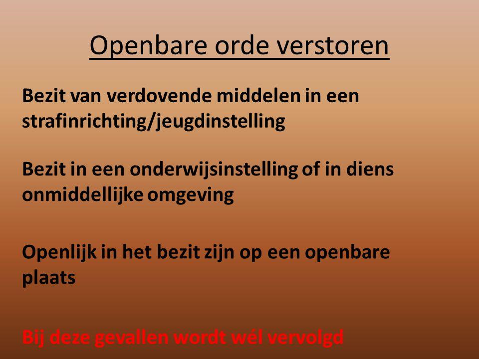 Openbare orde verstoren Bezit van verdovende middelen in een strafinrichting/jeugdinstelling Bezit in een onderwijsinstelling of in diens onmiddellijk