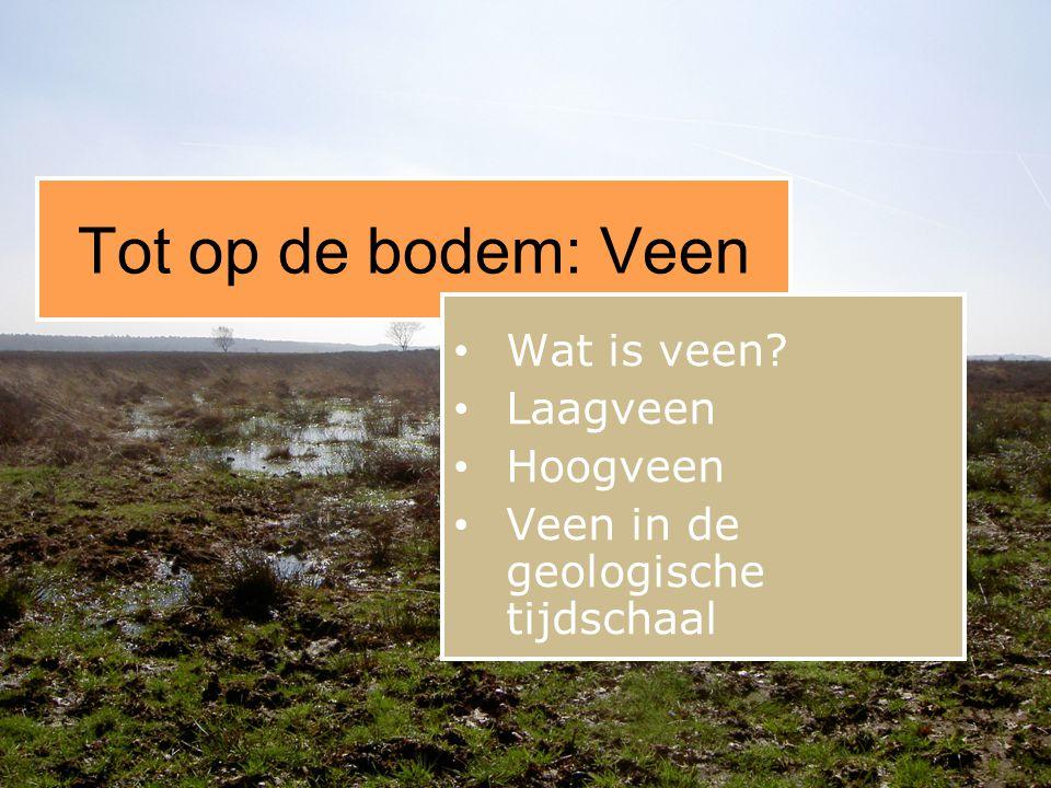 Tot op de bodem: Veen • Wat is veen? • Laagveen • Hoogveen • Veen in de geologische tijdschaal