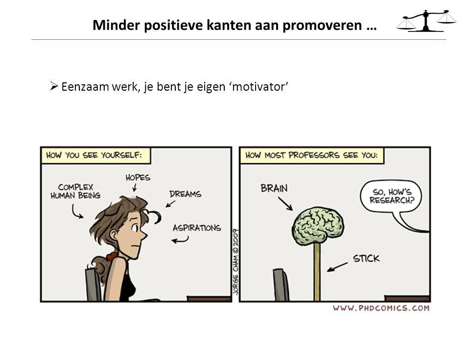  Eenzaam werk, je bent je eigen 'motivator' Minder positieve kanten aan promoveren …