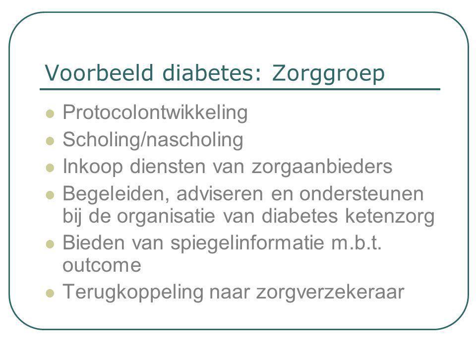 Voorbeeld diabetes: Zorggroep  Protocolontwikkeling  Scholing/nascholing  Inkoop diensten van zorgaanbieders  Begeleiden, adviseren en ondersteune