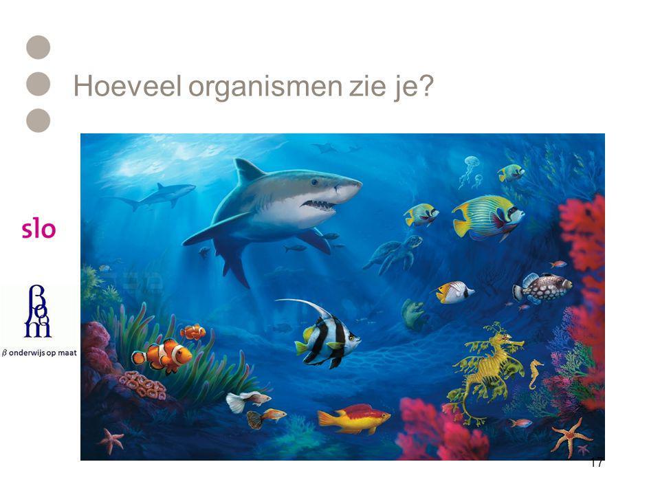 Hoeveel organismen zie je? 17
