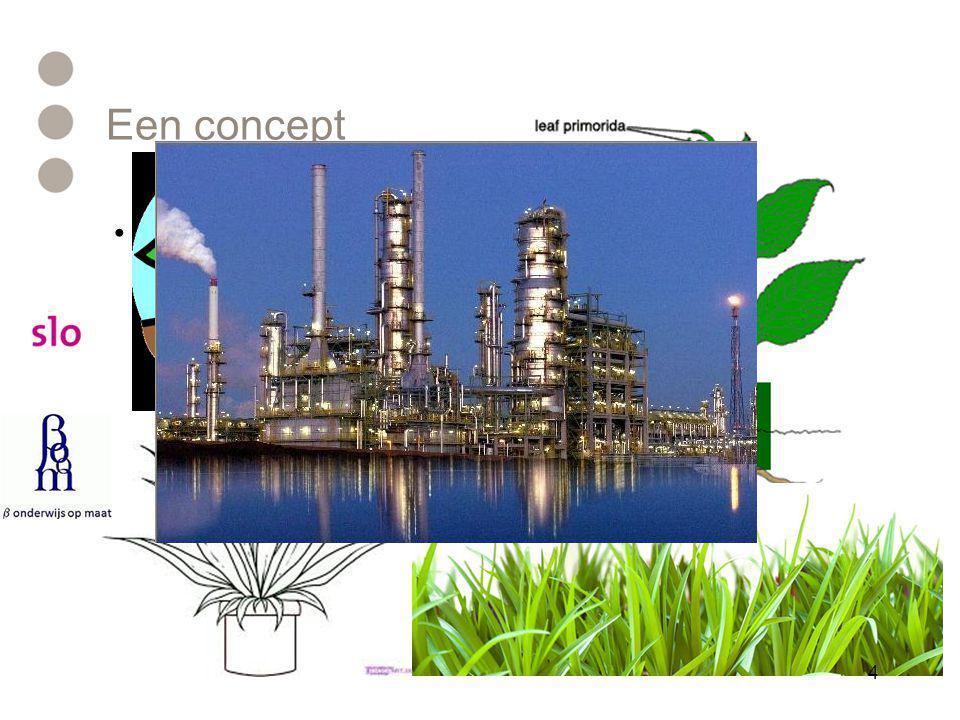 Een concept •Teken een plant 4