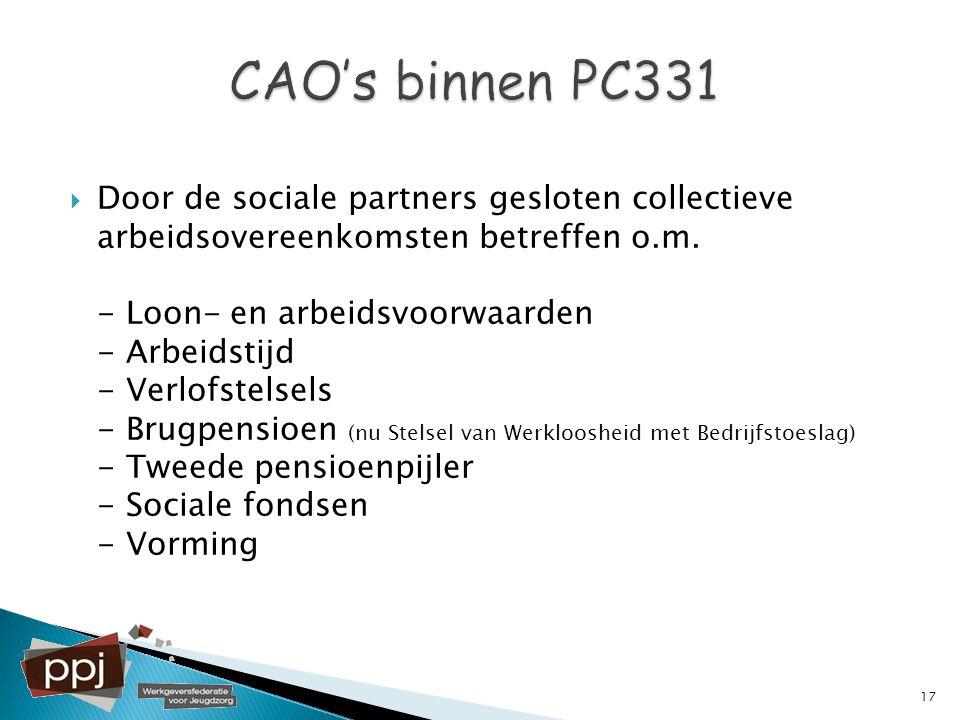  Door de sociale partners gesloten collectieve arbeidsovereenkomsten betreffen o.m. - Loon- en arbeidsvoorwaarden - Arbeidstijd - Verlofstelsels - Br