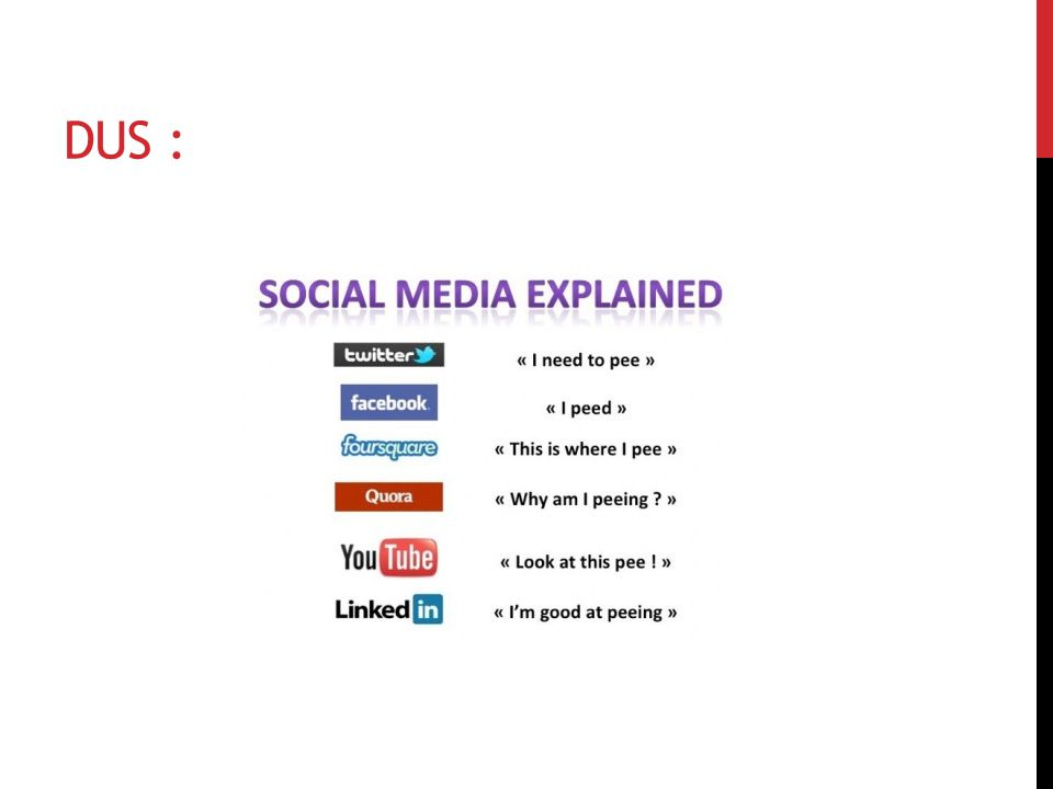 FANS.Steph Parker onderscheidde op Social Media Today vijf soorten fans.