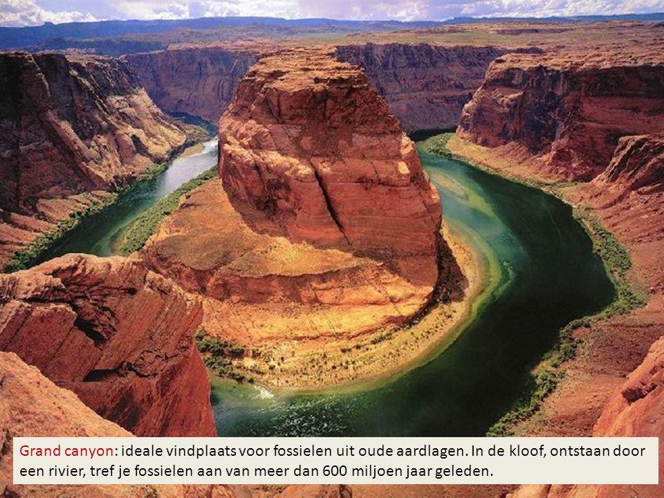 Grand canyon: ideale vindplaats voor fossielen uit oude aardlagen. In de kloof, ontstaan door een rivier, tref je fossielen aan van meer dan 600 miljo