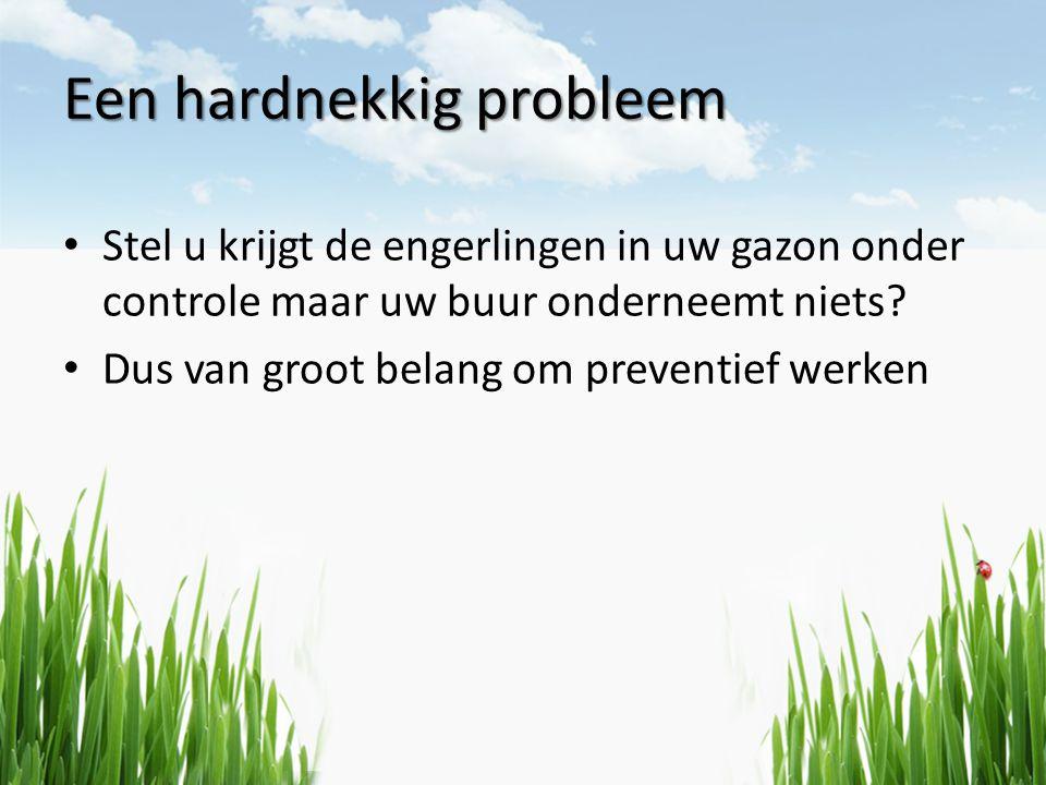 Een hardnekkig probleem • Stel u krijgt de engerlingen in uw gazon onder controle maar uw buur onderneemt niets? • Dus van groot belang om preventief