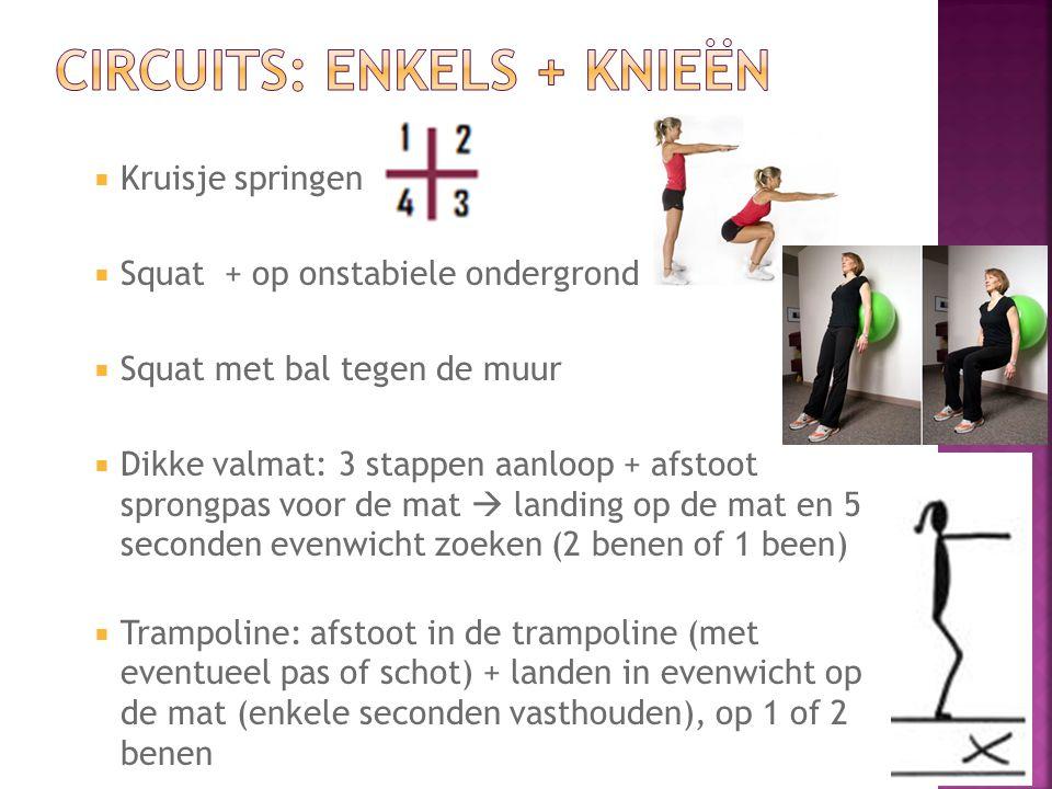  Kruisje springen  Squat + op onstabiele ondergrond  Squat met bal tegen de muur  Dikke valmat: 3 stappen aanloop + afstoot sprongpas voor de mat  landing op de mat en 5 seconden evenwicht zoeken (2 benen of 1 been)  Trampoline: afstoot in de trampoline (met eventueel pas of schot) + landen in evenwicht op de mat (enkele seconden vasthouden), op 1 of 2 benen