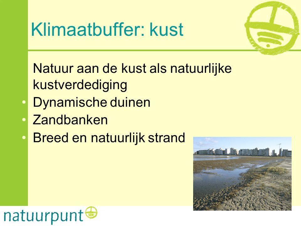 Klimaatbuffer: kust Natuur aan de kust als natuurlijke kustverdediging •Dynamische duinen •Zandbanken •Breed en natuurlijk strand