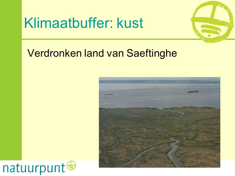 Klimaatbuffer: kust Verdronken land van Saeftinghe