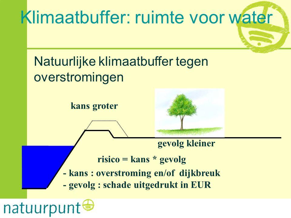 gevolg kleiner kans groter risico = kans * gevolg - kans : overstroming en/of dijkbreuk - gevolg : schade uitgedrukt in EUR Natuurlijke klimaatbuffer