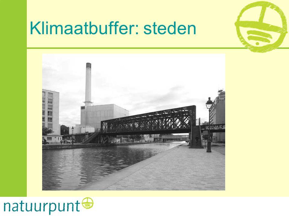 Klimaatbuffer: steden