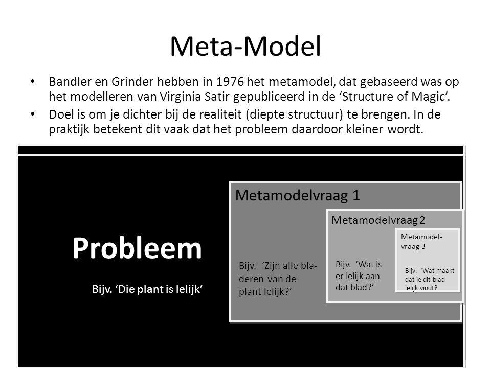 Meta-Model • Bandler en Grinder hebben in 1976 het metamodel, dat gebaseerd was op het modelleren van Virginia Satir gepubliceerd in de 'Structure of