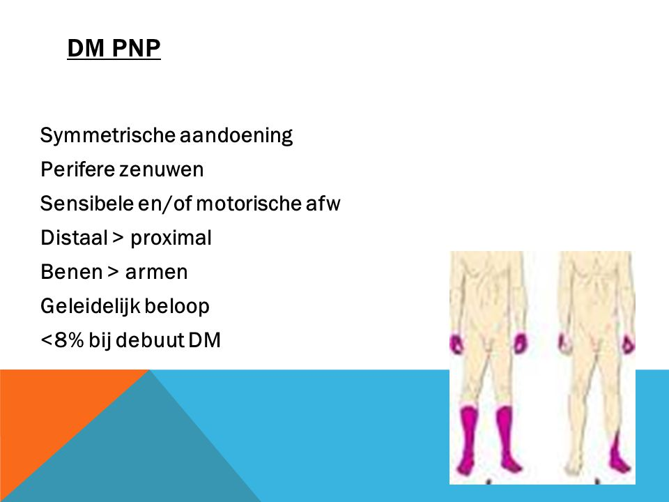 DM PNP Symmetrische aandoening Perifere zenuwen Sensibele en/of motorische afw Distaal > proximal Benen > armen Geleidelijk beloop <8% bij debuut DM