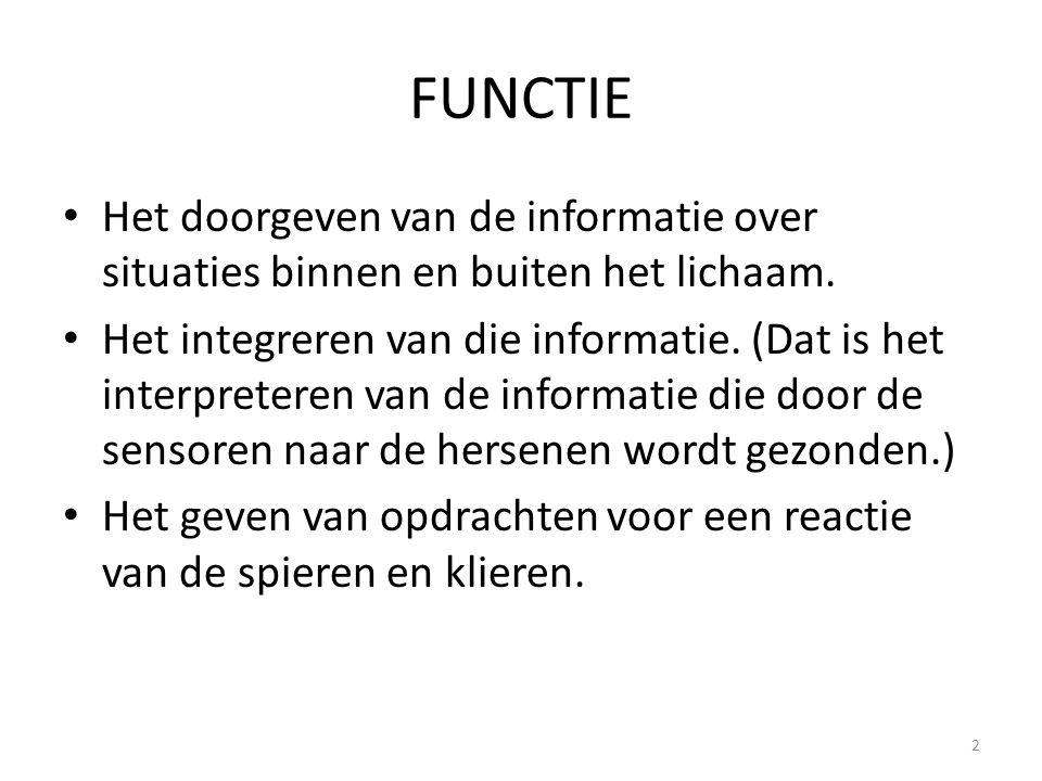 FUNCTIE • Het doorgeven van de informatie over situaties binnen en buiten het lichaam. • Het integreren van die informatie. (Dat is het interpreteren