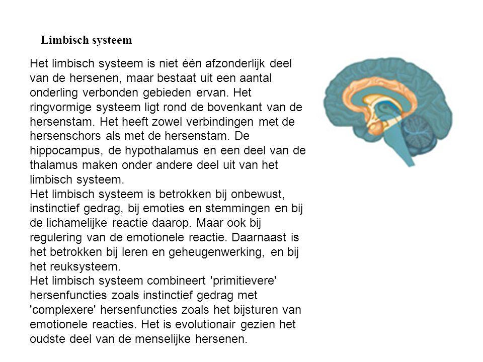 Limbisch systeem Het limbisch systeem is niet één afzonderlijk deel van de hersenen, maar bestaat uit een aantal onderling verbonden gebieden ervan. H