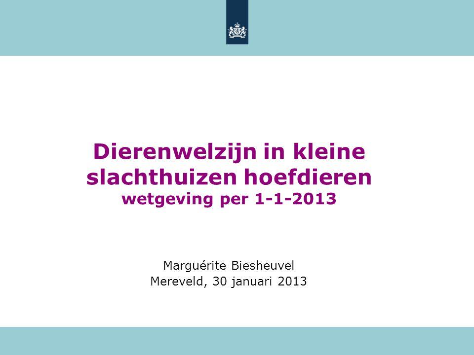 Dierenwelzijn in kleine slachthuizen hoefdieren wetgeving per 1-1-2013 Marguérite Biesheuvel Mereveld, 30 januari 2013
