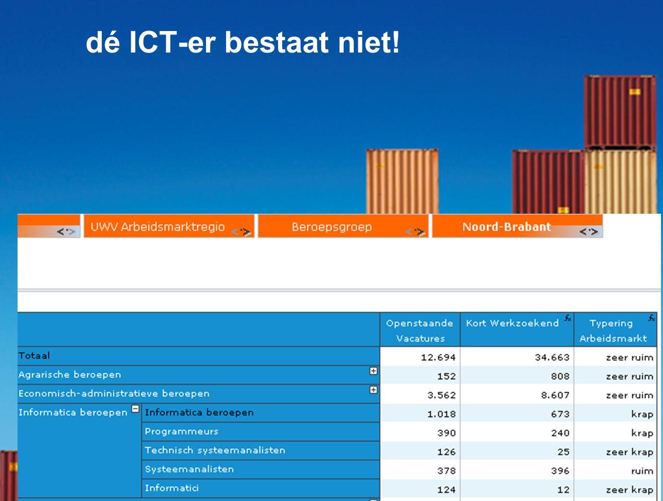 11 dé ICT-er bestaat niet!