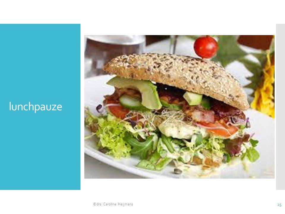 lunchpauze ©drs. Caroline Heijmans 15