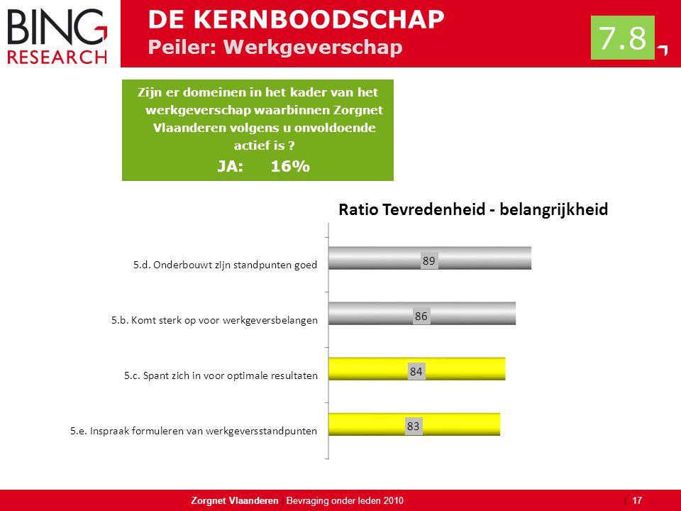 | Peiler: Werkgeverschap Zorgnet Vlaanderen | 17 Bevraging onder leden 2010 DE KERNBOODSCHAP 7.8 Zijn er domeinen in het kader van het werkgeverschap