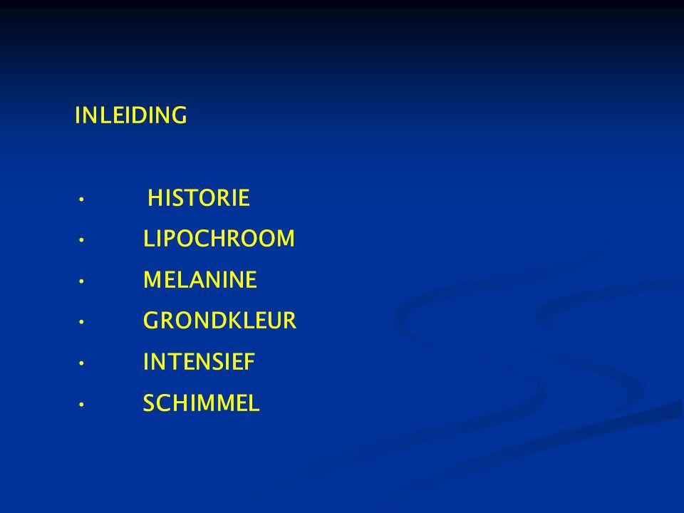 INLEIDING • HISTORIE •LIPOCHROOM •MELANINE •GRONDKLEUR •INTENSIEF •SCHIMMEL