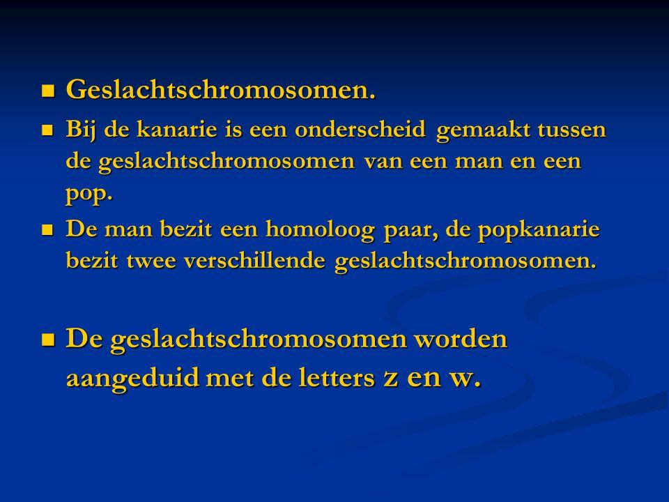  Geslachtschromosomen.  Bij de kanarie is een onderscheid gemaakt tussen de geslachtschromosomen van een man en een pop.  De man bezit een homoloog
