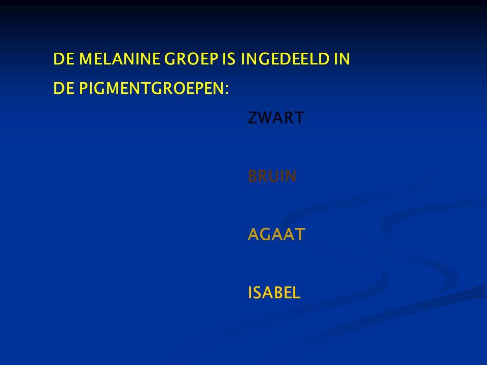 DE MELANINE GROEP IS INGEDEELD IN DE PIGMENTGROEPEN: ZWART BRUIN AGAAT ISABEL