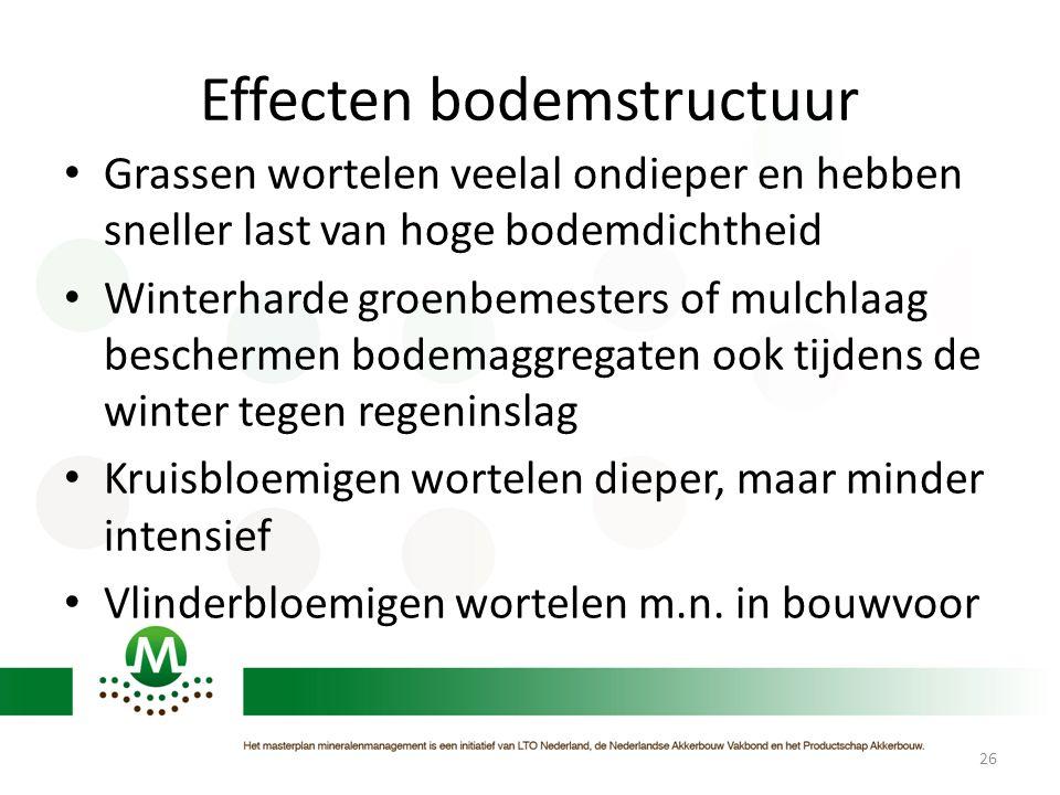 Effecten bodemstructuur • Grassen wortelen veelal ondieper en hebben sneller last van hoge bodemdichtheid • Winterharde groenbemesters of mulchlaag be