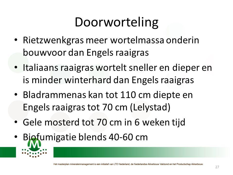 Doorworteling • Rietzwenkgras meer wortelmassa onderin bouwvoor dan Engels raaigras • Italiaans raaigras wortelt sneller en dieper en is minder winter