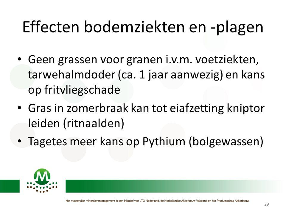 Effecten bodemziekten en -plagen • Geen grassen voor granen i.v.m. voetziekten, tarwehalmdoder (ca. 1 jaar aanwezig) en kans op fritvliegschade • Gras