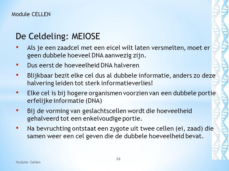 De Celdeling: MEIOSE • Als je een zaadcel met een eicel wilt laten versmelten, moet er geen dubbele hoeveel DNA aanwezig zijn. • Dus eerst de hoeveelh