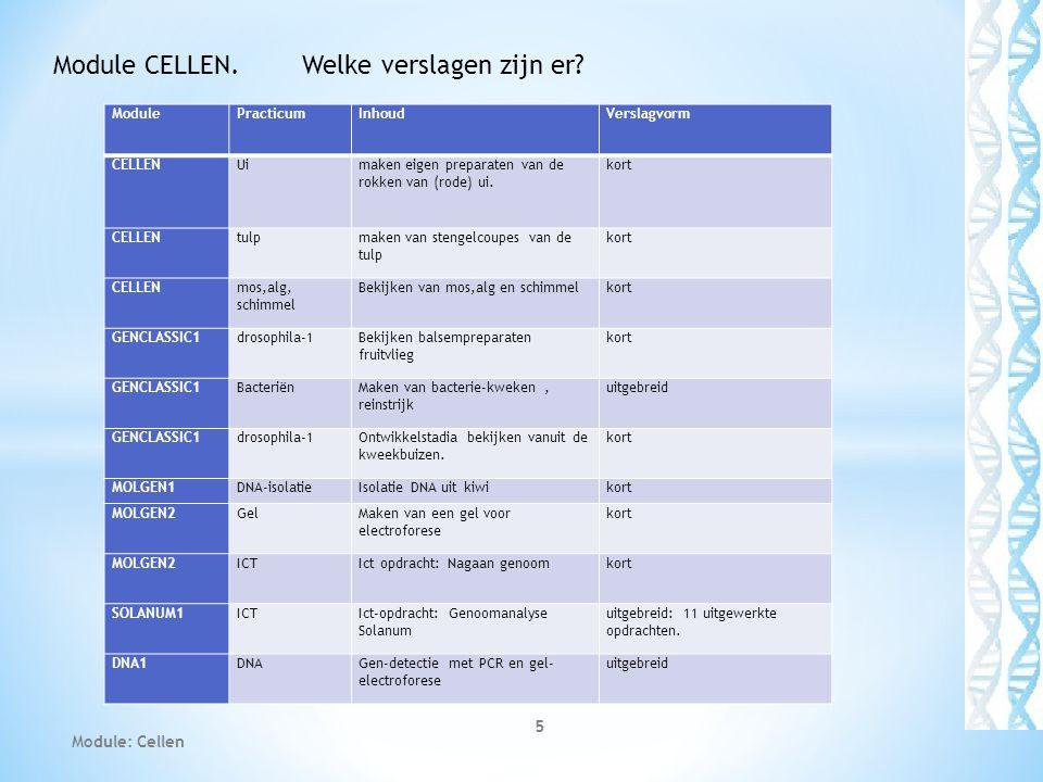 Module: Cellen 5 Module CELLEN. Welke verslagen zijn er? ModulePracticumInhoudVerslagvorm CELLENUimaken eigen preparaten van de rokken van (rode) ui.