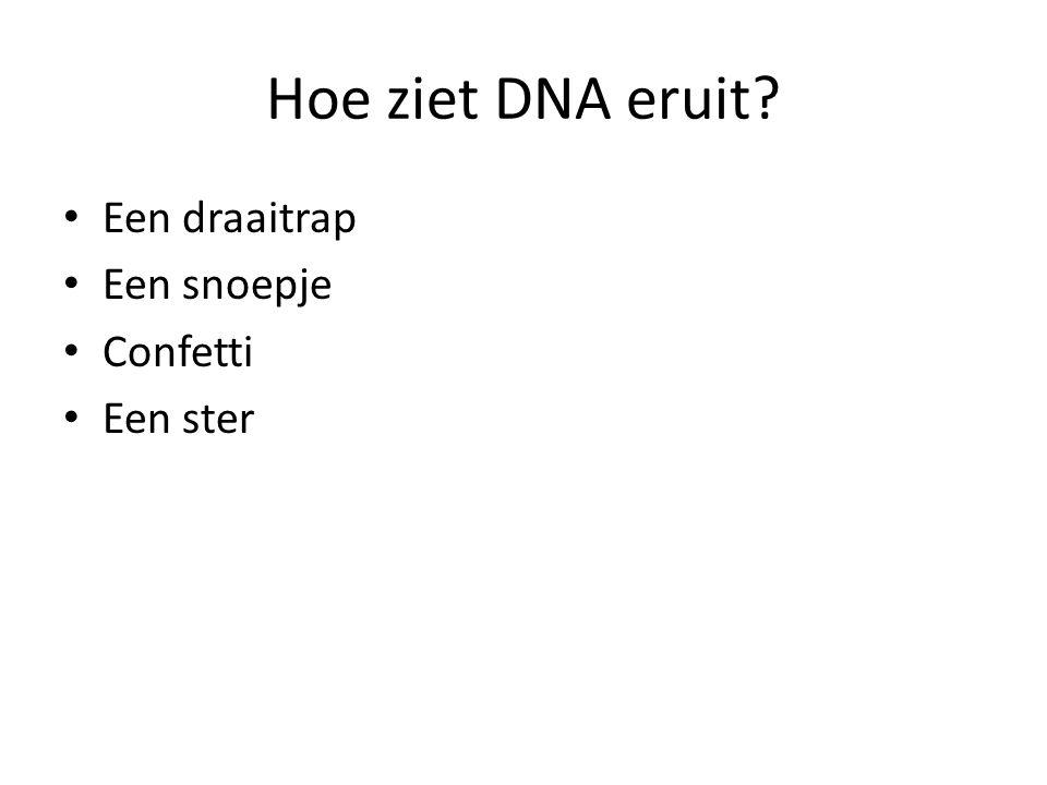 Hoe ziet DNA eruit? • Een draaitrap • Een snoepje • Confetti • Een ster