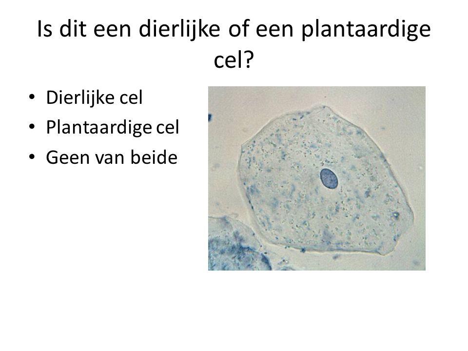 Is dit een dierlijke of een plantaardige cel? • Dierlijke cel • Plantaardige cel • Geen van beide