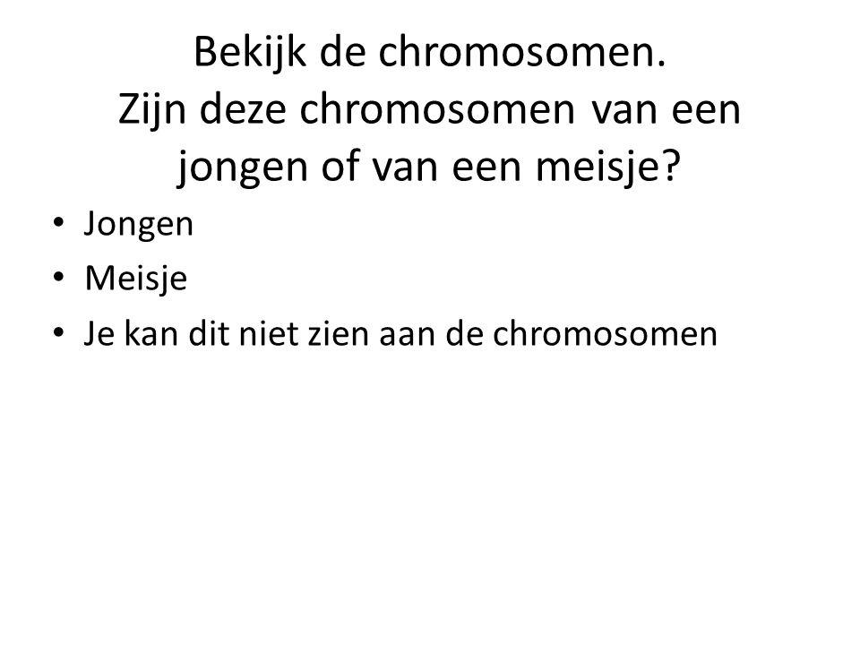 Bekijk de chromosomen. Zijn deze chromosomen van een jongen of van een meisje? • Jongen • Meisje • Je kan dit niet zien aan de chromosomen