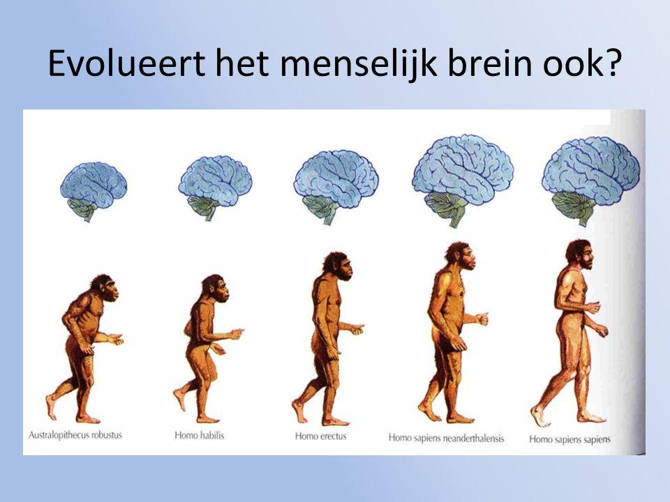Evolueert het menselijk brein ook?