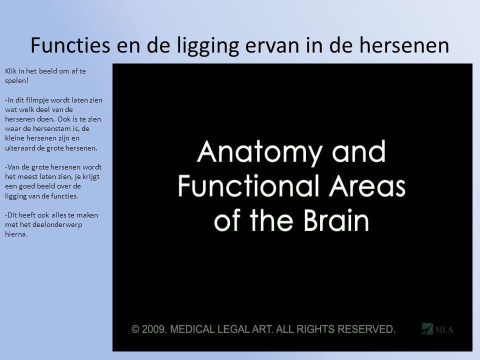 Functies en de ligging ervan in de hersenen Klik in het beeld om af te spelen! -In dit filmpje wordt laten zien wat welk deel van de hersenen doen. Oo