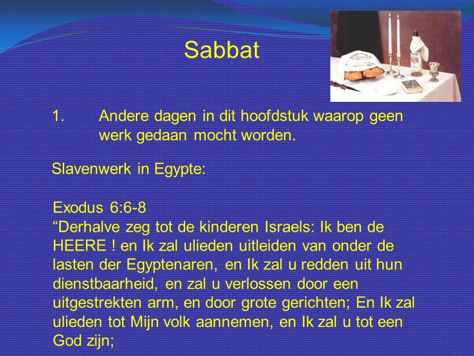 """Sabbat 1.Andere dagen in dit hoofdstuk waarop geen werk gedaan mocht worden. Slavenwerk in Egypte: Exodus 6:6-8 """"Derhalve zeg tot de kinderen Israels:"""