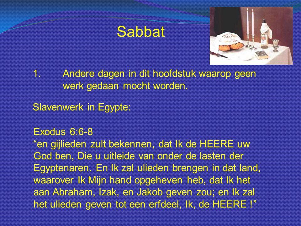 """Sabbat 1.Andere dagen in dit hoofdstuk waarop geen werk gedaan mocht worden. Slavenwerk in Egypte: Exodus 6:6-8 """"en gijlieden zult bekennen, dat Ik de"""