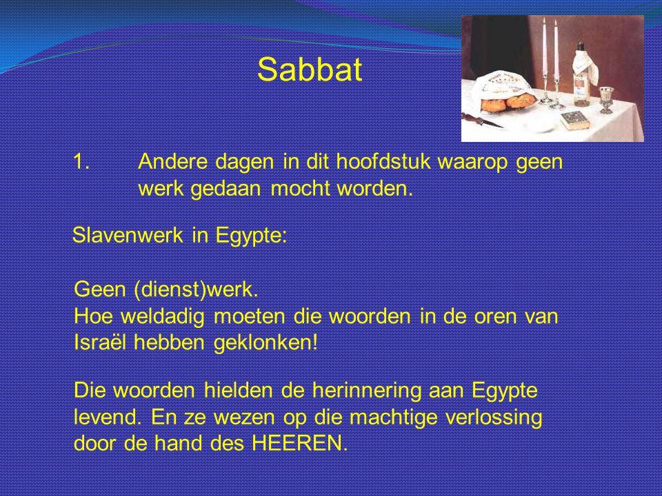 Sabbat 1.Andere dagen in dit hoofdstuk waarop geen werk gedaan mocht worden. Slavenwerk in Egypte: Geen (dienst)werk. Hoe weldadig moeten die woorden