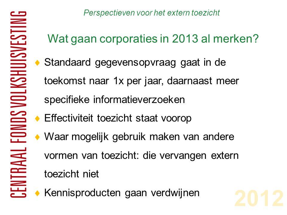 Perspectieven voor het extern toezicht Wat gaan corporaties in 2013 al merken?  Standaard gegevensopvraag gaat in de toekomst naar 1x per jaar, daarn