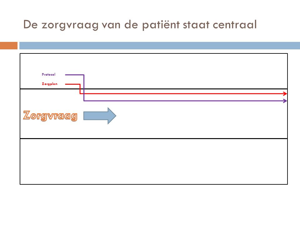 De zorgvraag van de patiënt staat centraal Zorgplan Protocol