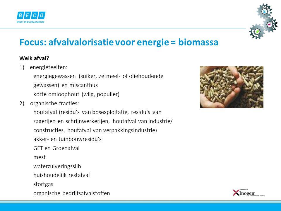 Focus: afvalvalorisatie voor energie = biomassa Welk afval? 1)energieteelten: energiegewassen (suiker, zetmeel- of oliehoudende gewassen) en miscanthu