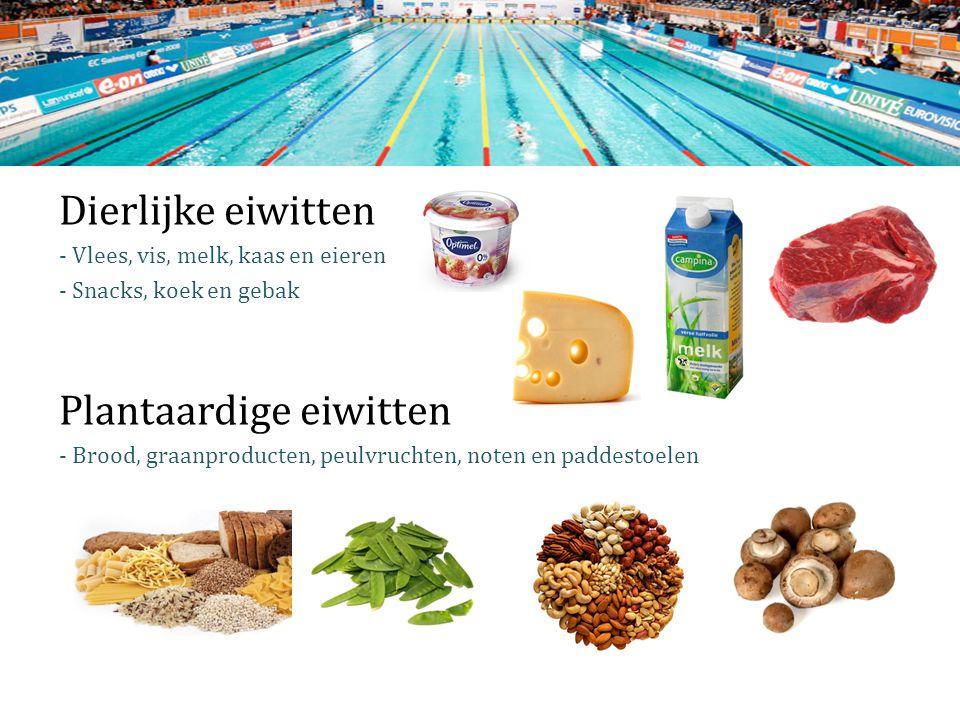 Dierlijke eiwitten - Vlees, vis, melk, kaas en eieren - Snacks, koek en gebak Plantaardige eiwitten - Brood, graanproducten, peulvruchten, noten en paddestoelen